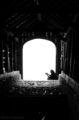 Светлината в тунела струва една лея ; comments:7