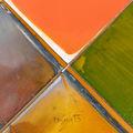 Цветовете на солта 2016 бургаски солници ; comments:45