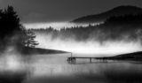 Мъгливо Утро ; comments:38