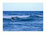 Surfing ; comments:7