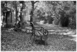 Самотна пейка на старото виенско гробище ; comments:11