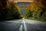 Пътят към..... ; Comments:9