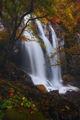 Боянски водопад - есен ; Коментари:29