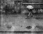 Сезонът на дъждовете 16 ; comments:34