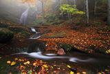 Ланжин скок в есенно-мистична украса ; comments:64