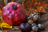 no name ( ID=2020603 ) ; comments:8