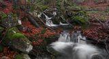 Боянска река! ; comments:46