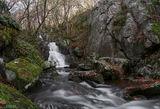 Сребърните води! ; comments:49