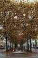 Есен във Винтертур ; Коментари:3