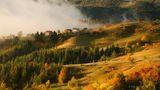 Усещане за есен ; Comments:21