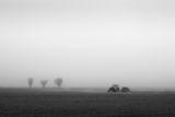 Есенна сеитба в мъглата ; Коментари:11