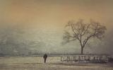 Мъглива утрин ; comments:22