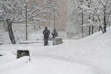 Tombe la neige ; Коментари:12