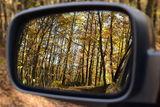 Огледалото ; Comments:2
