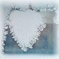 Ледено сърце... ; Коментари:30