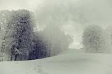 Frozen dreams ; Comments:22