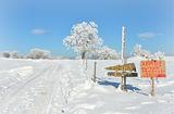 Зимна конска извара!!! :) ; comments:9