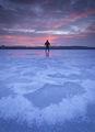 Леденото езеро ; Comments:17