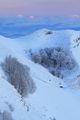Зимна приказка от Врачански Балкан ; comments:48
