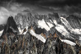 Алпийски зъбери ; Коментари:12