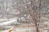 Снег се сипе на парцали, демек - вАли ; comments:4