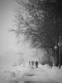 Зимна разходка ; comments:8