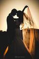 Любов, огън, танц. ; comments:1