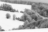 Зимна импресия ; comments:43