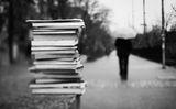улична библиотека ; comments:17