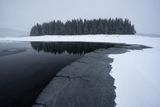 Изгубен в зимната пустош VIII ; comments:58