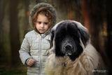 Кати и голямото куче ; comments:13