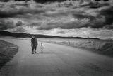 Вървят ли двама на дълъг път ... ; Comments:72