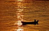 златната река ; Коментари:12