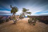 Moran Point - Grand Canyon, AZ ; comments:30