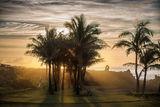 Залез на Великденски Остров ; comments:17