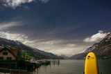 Жълти вълци, бели лодки и бели върхари... ; Коментари:8