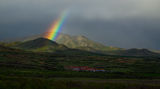 Чтобы увидеть радугу, надо пережить дождь.... ; Comments:11