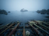 Геометрия в мъглата | Тюленово ; Коментари:9