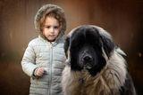 Кати и голямото куче ; comments:6