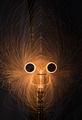 Краля на маймуните ; comments:3
