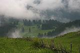 В сезона на мъглите.... ; Comments:19