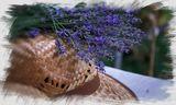 Lavender mood ; comments:3