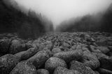 Мъгливите мостове ; Коментари:9
