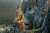 Планетата на маймуните ; Comments:25