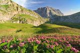 Пейзаж от планината Тимфи, Гърция ; Comments:10
