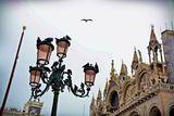 Венеция август 2017 ; comments:8
