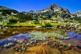 Oмайна гледка от Пирин планина ; Comments:7