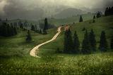 Всеки път води някъде ; Comments:28