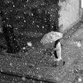 Първи сняг ; comments:39
