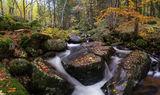 Есен... ; comments:39